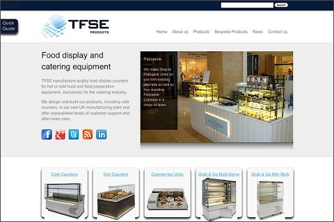 TFSE website homepage